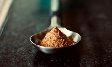 Best protein powder: Better nutrition in a bottle