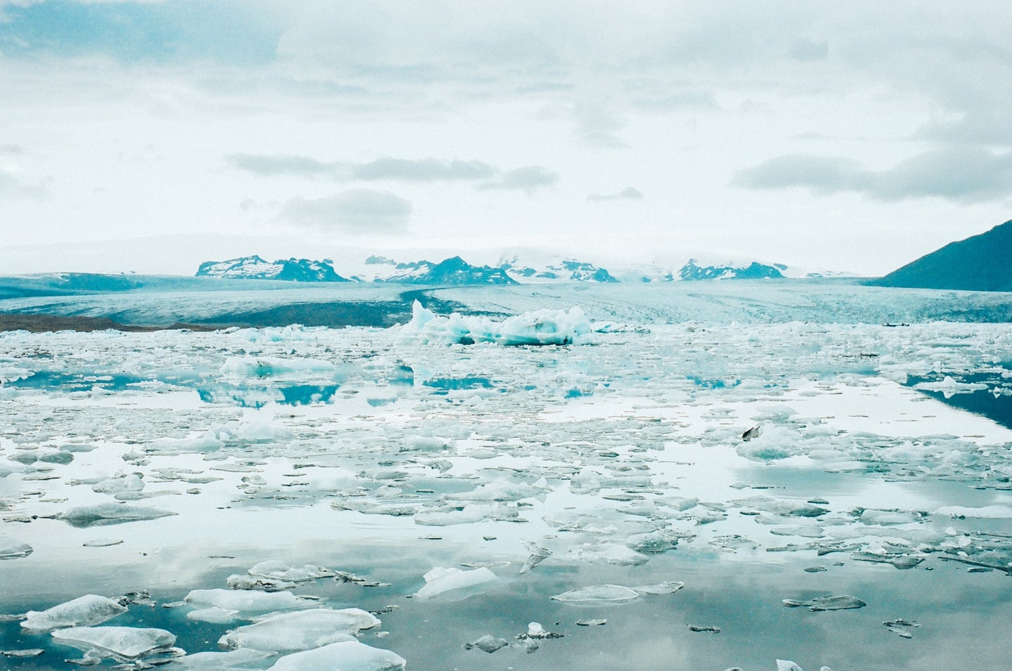 cold ocean waters with chunks of ice