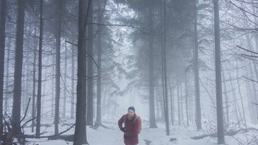 Person walking in forest in the middle of a snow storm.