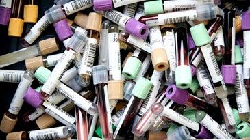 Blood vials at a bank or testing lab