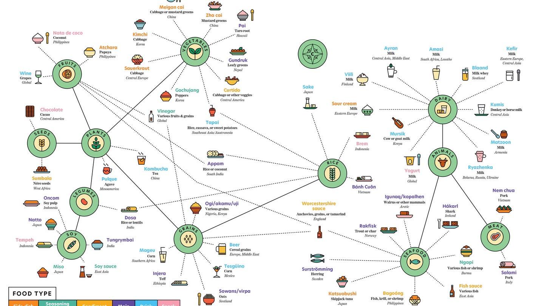 Mona Chalabi fermented food chart