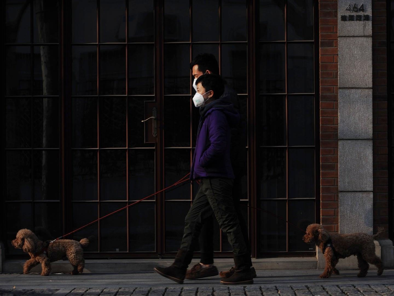 people wearing masks walking their dogs