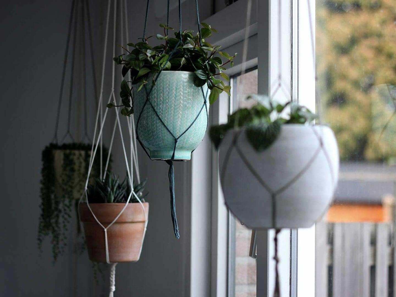 Hanging baskets holding plants.