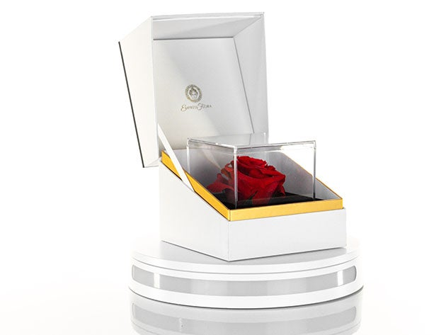 La Nota: Forever Rose With Personalized Message