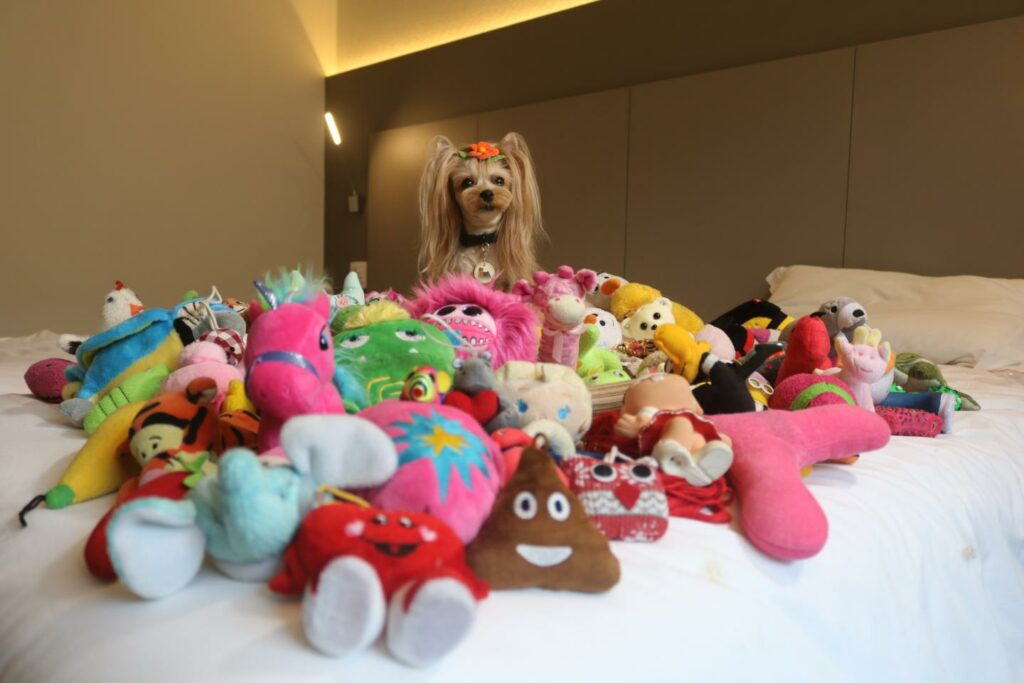 Vicky Nina with all her toys