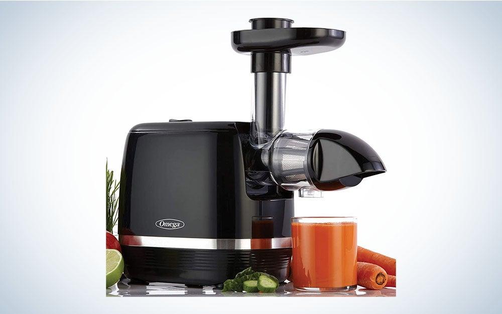 Omega Cold Press 365 Juicer