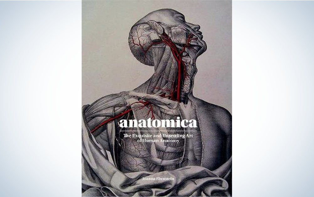 Anatomica is one of our best gift ideas for Valentine's Day.
