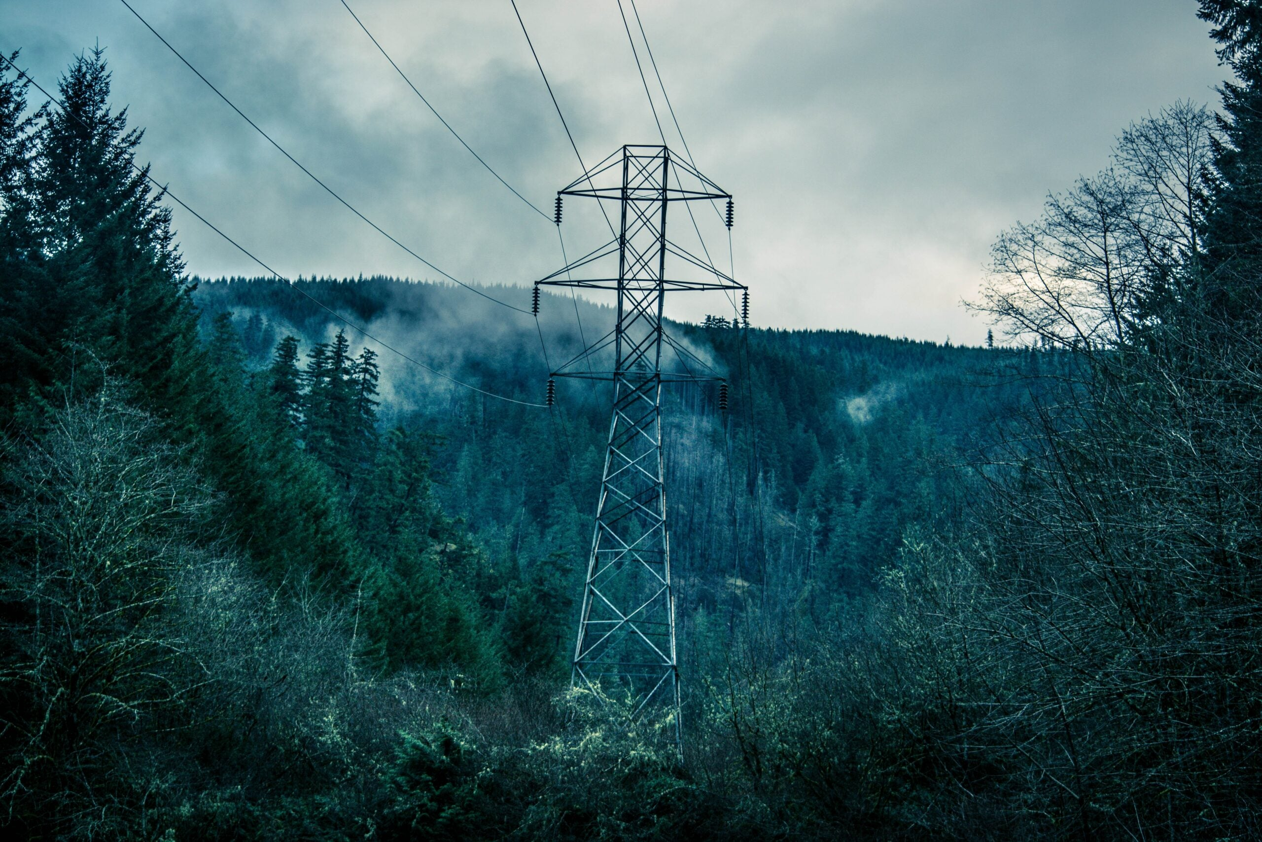 Electricity lines over a deep, gloomy forest with gas rising.