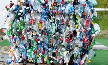 Microplastics are everywhere. Here's what that means for our health.