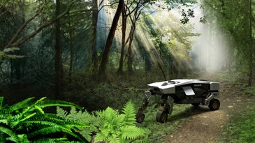 Hyundai Tiger walking car concept in the woods.