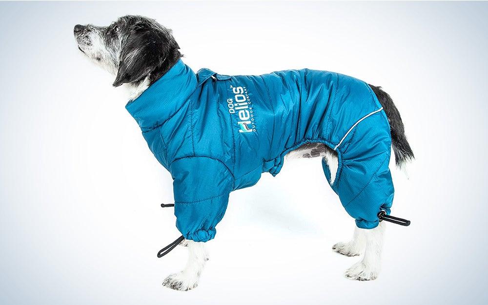 DogHelios Thunder-Crackle Reflective Dog Jacket
