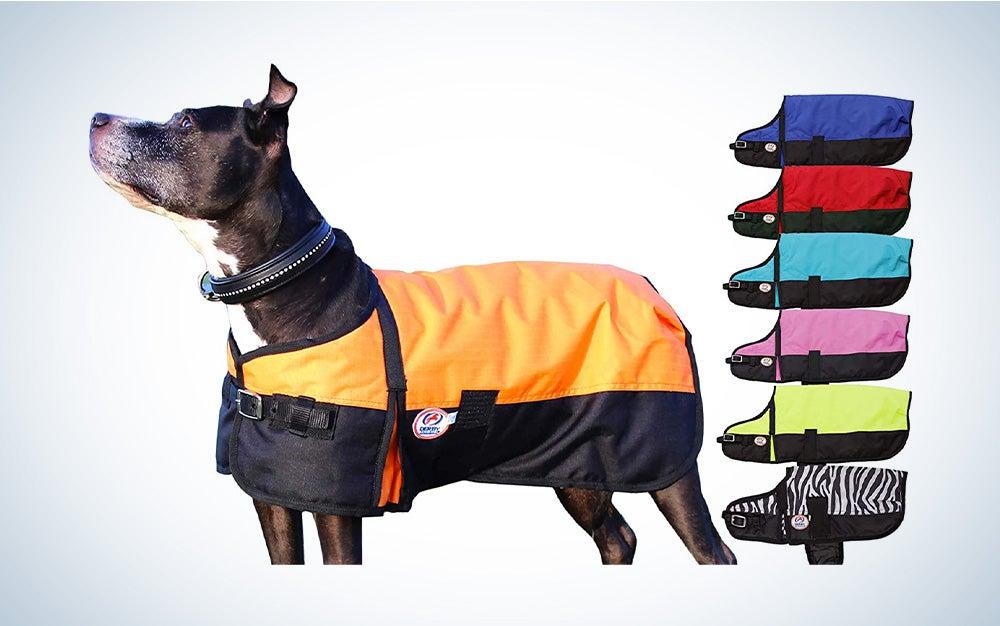 Derby Originals Horse Tough 600D Ripstop Dog Coat