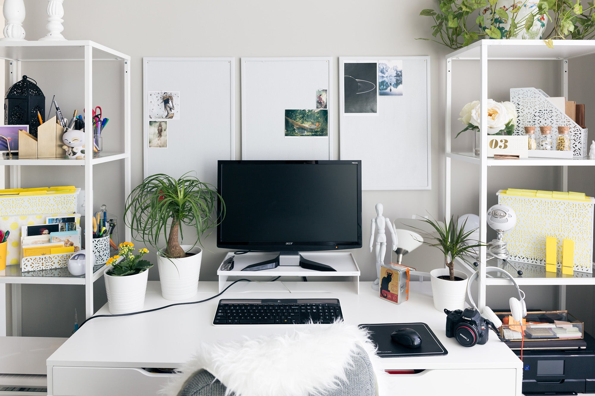 office workspace with a computer on a desk, plants, and two storage shelves beside the desk