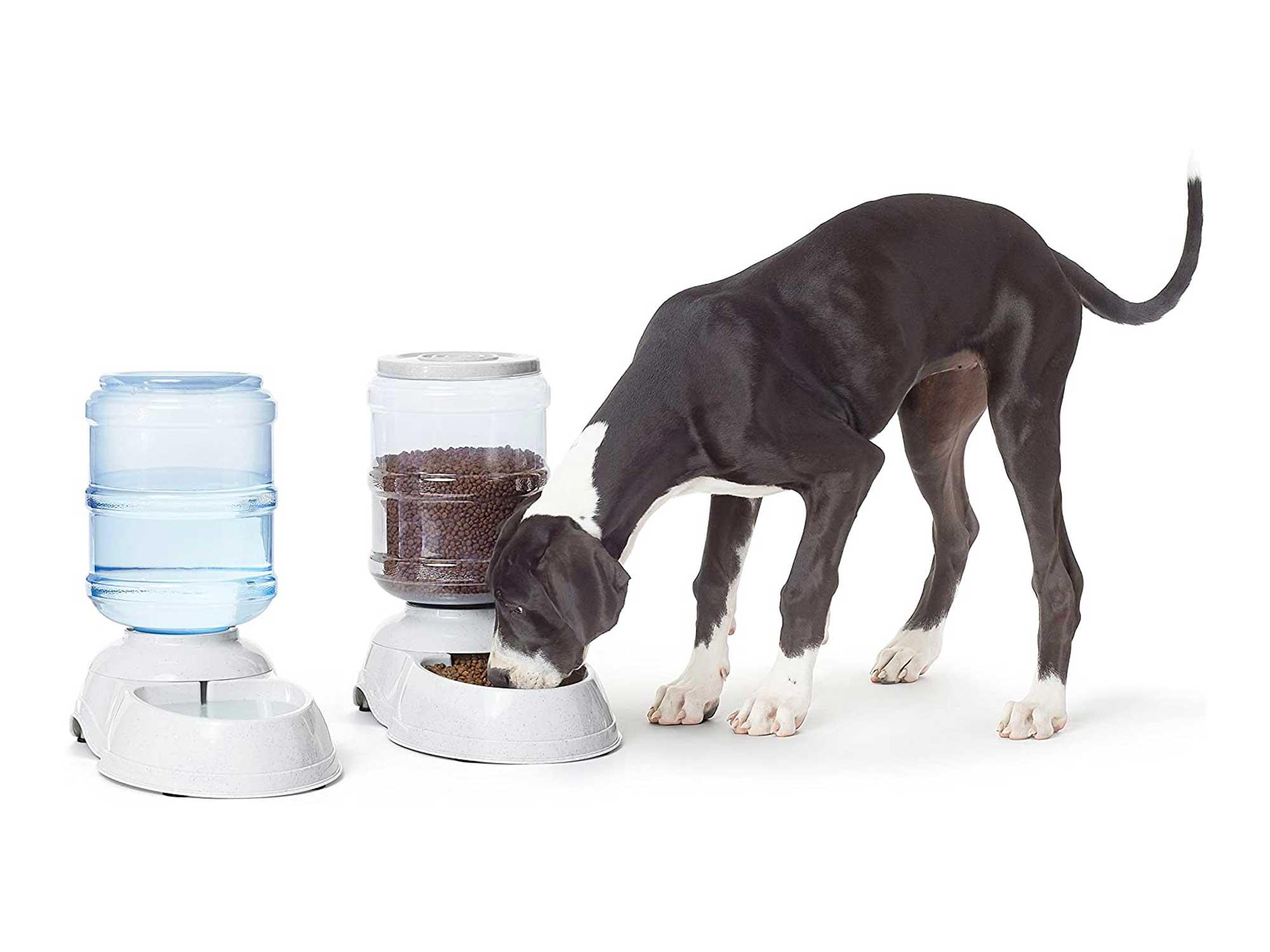 Amazon Basics Gravity Pet Food Feeder and Water Dispenser Bundle, Large