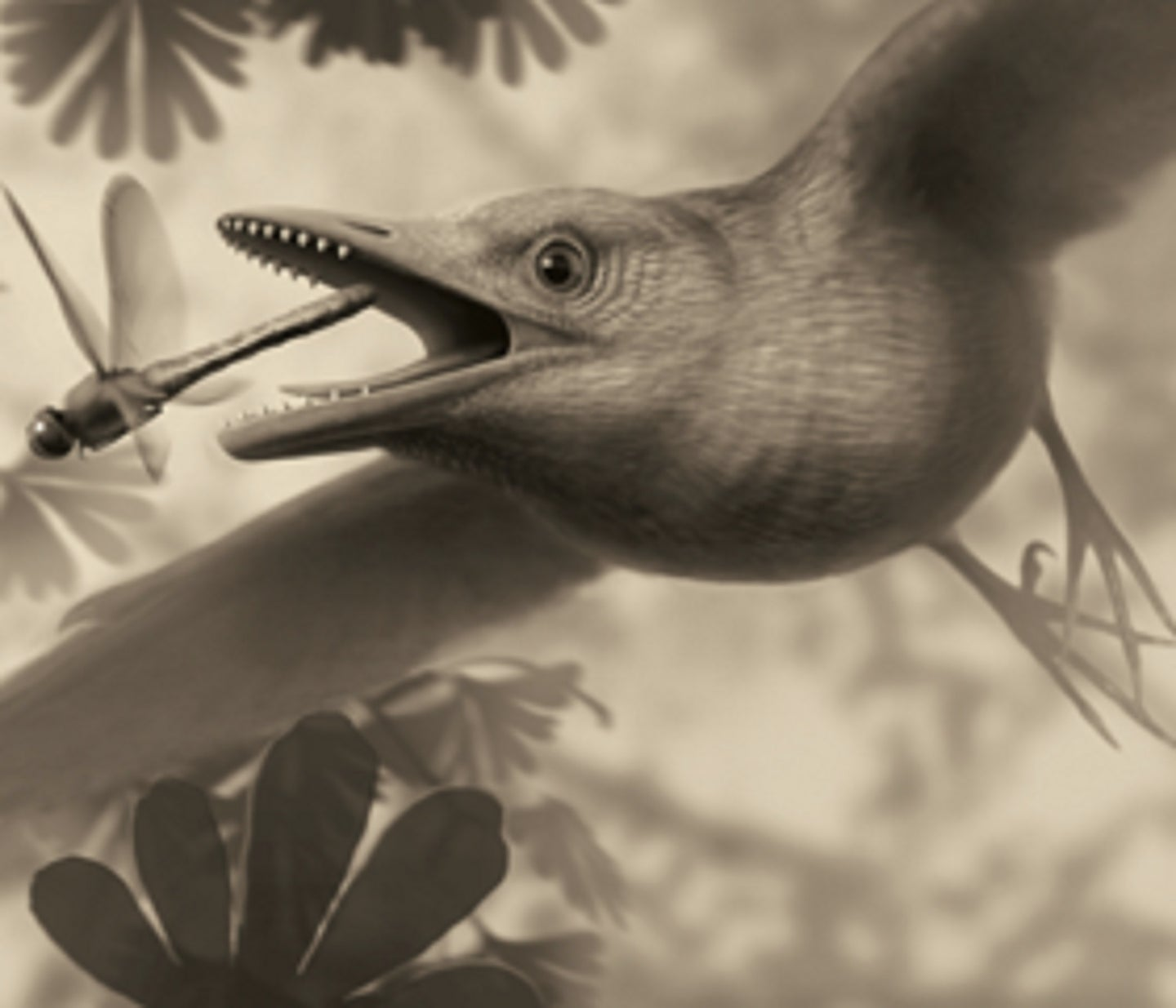 A reimagined prehistoric bird chasing a dragonfly over plants