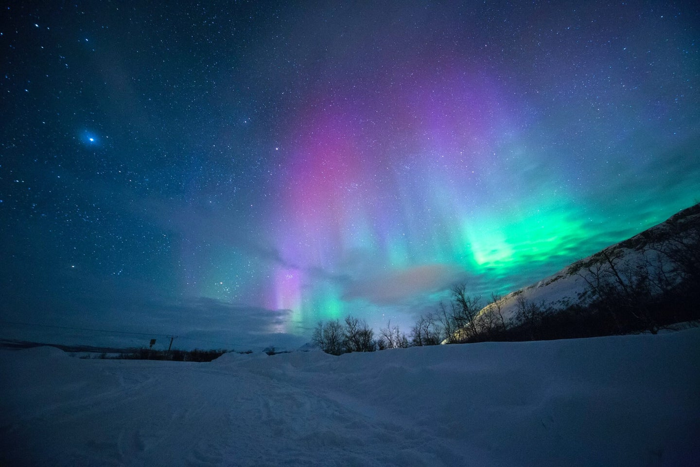 Aurora sky over icy winter forest at night