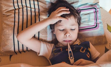 The surprising ways your immune system adapts to the flu virus you got as a kid