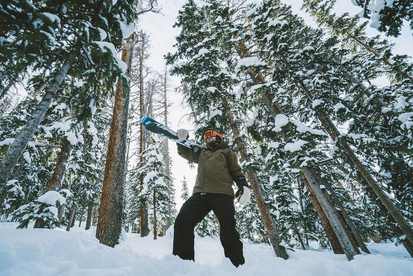person in the best snow pants with skis on a mountain in front of trees