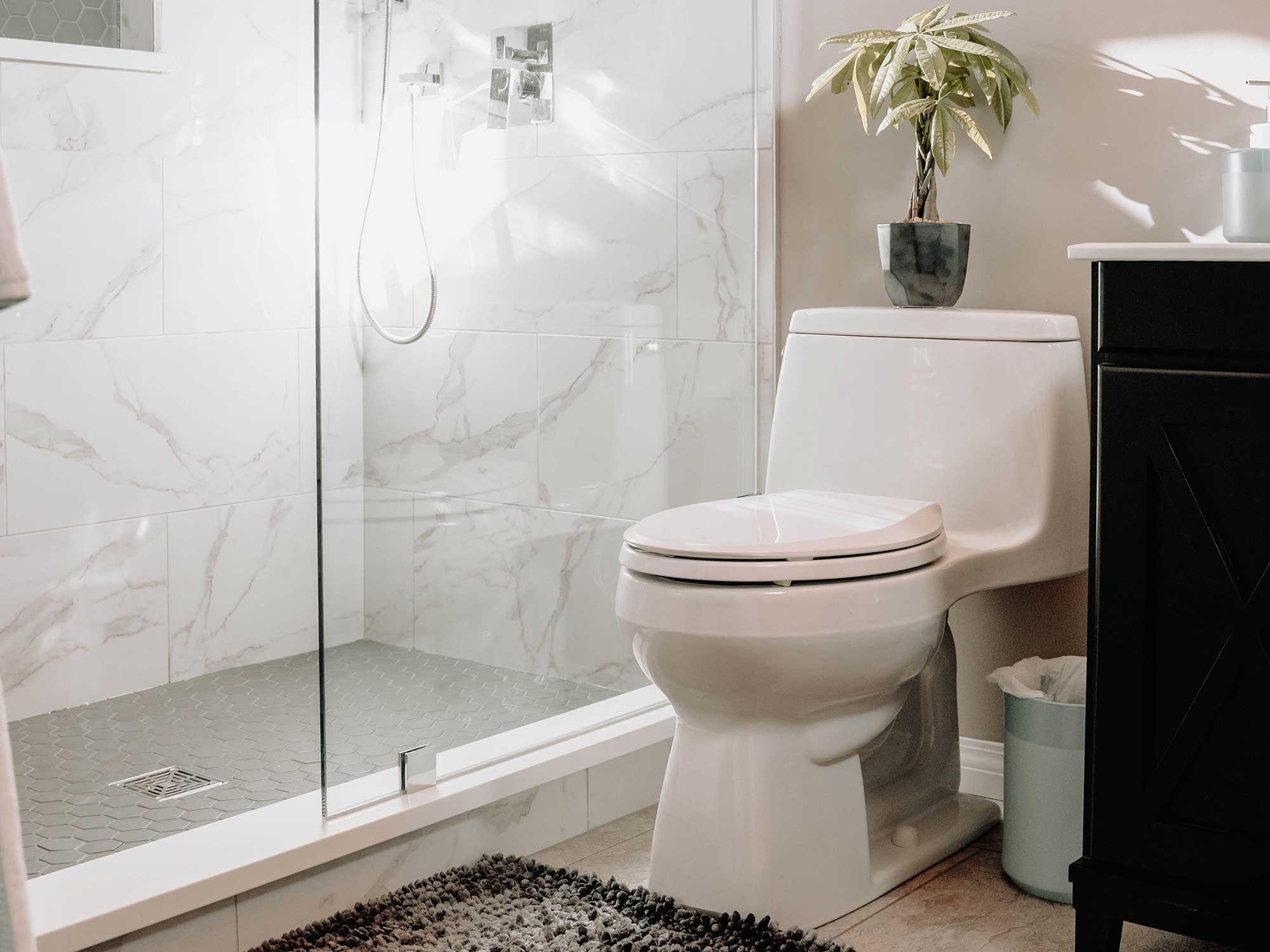 Toilet bowl in a nice bathroom