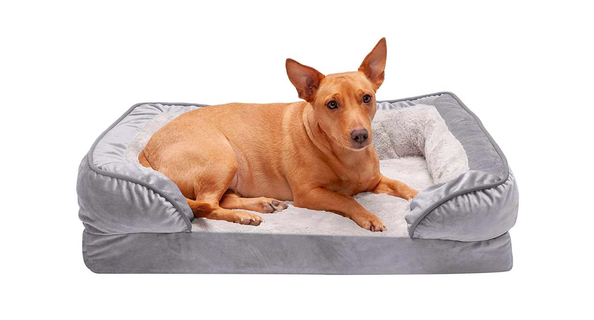 Furhaven Pet - Plush Orthopedic Sofa, Ergonomic Contour Mattress