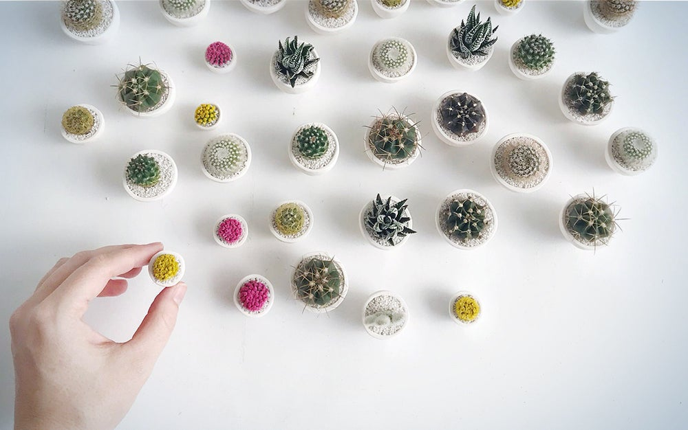 SURPRISE! Mini Cactus and Mini Handmade Ceramic Planterme