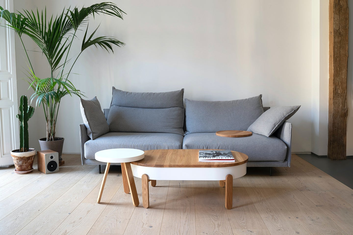 organized living room with plants, coffee table, and a grey couch
