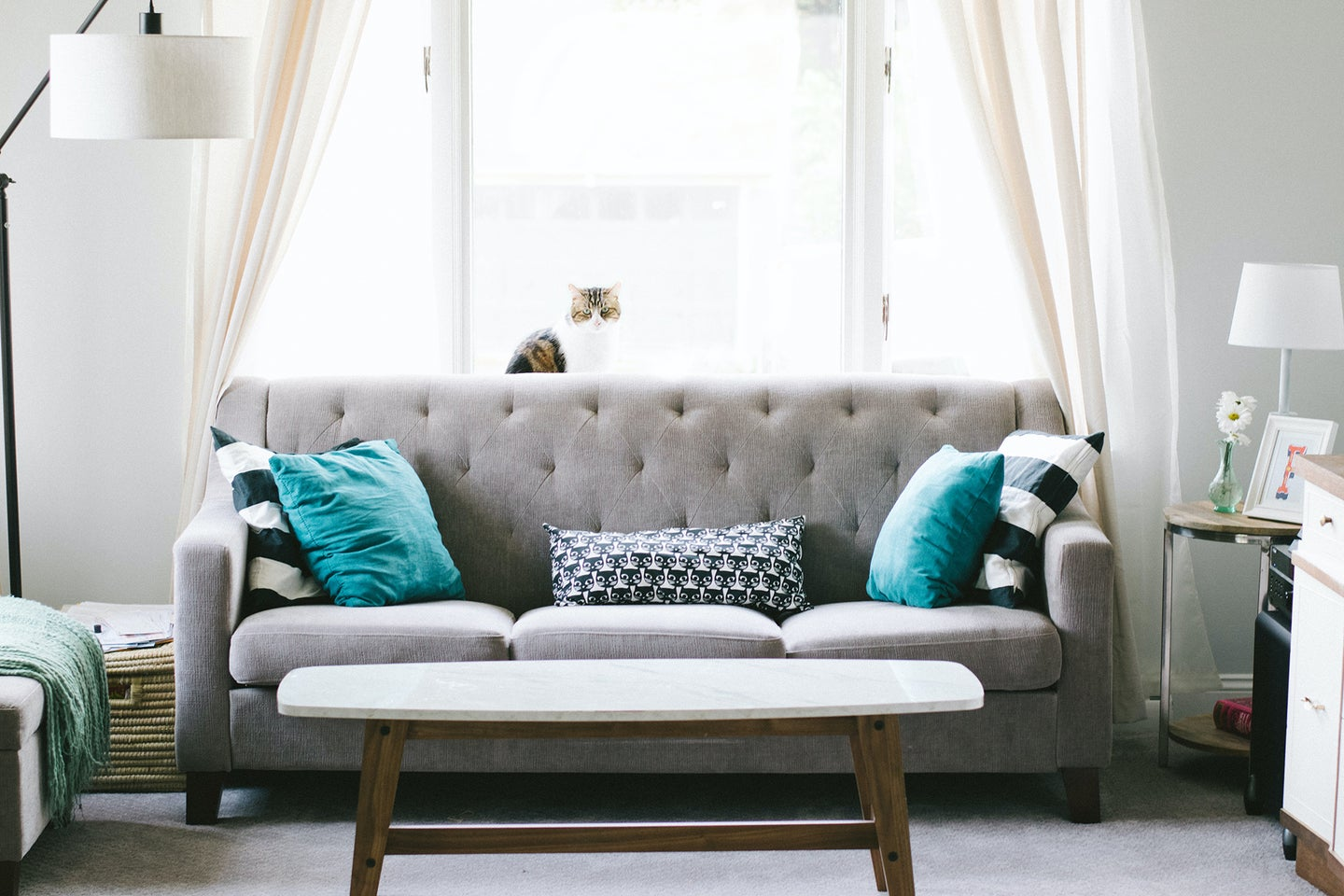 A furnished living room cleaned with the best steam cleaner