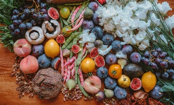 11 percent of food waste comes from our homes