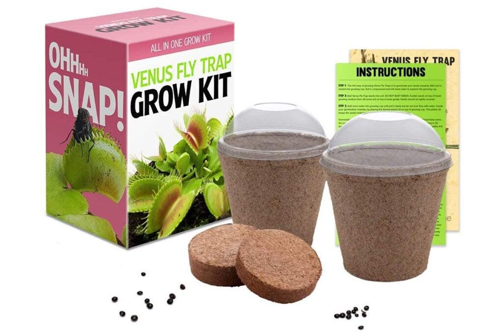 Venus Flytrap Seeds Growing Kit
