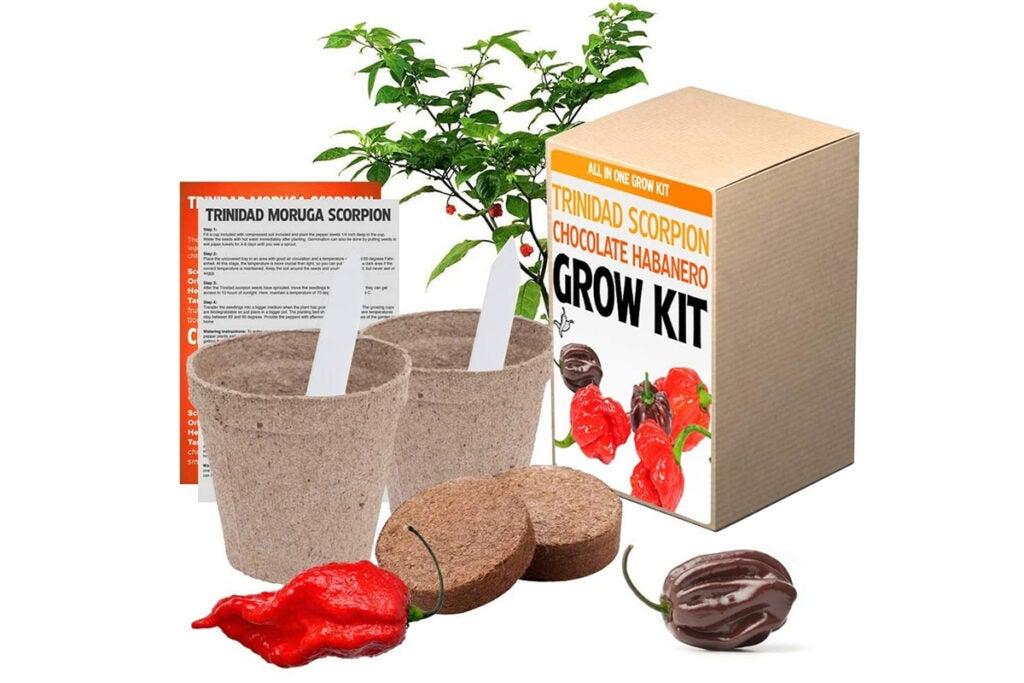 Trinidad Moruga Scorpion and Chocolate Habanero Chili Grow Kit
