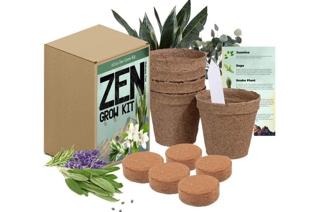 Zen Garden Spiritual Healing House Plants Grow Kit