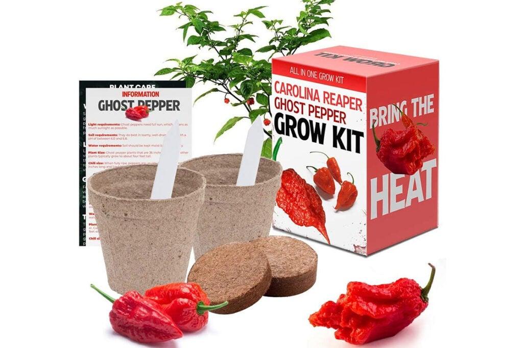 Carolina Reaper and Ghost Pepper Chili Grow Kit