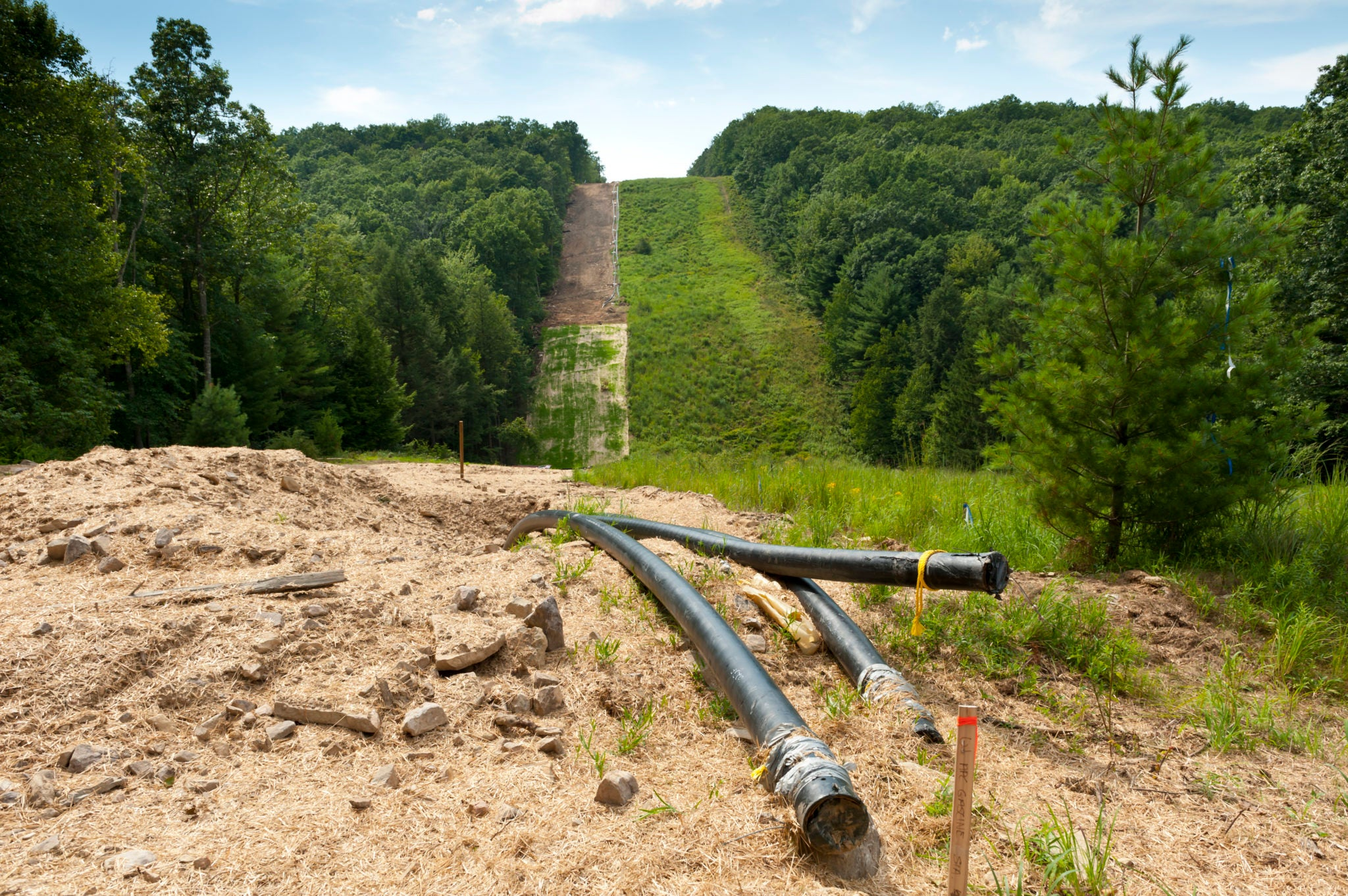 A gas pipeline under construction in a clear-cut strip of forest