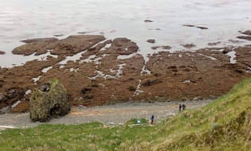 "How scientists helped Alaska's ""Rat Island"" shake off its namesake rodents"
