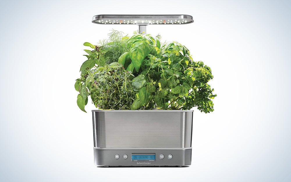 smart garden with plants growing out of it is one of the best birthday gift ideas for men