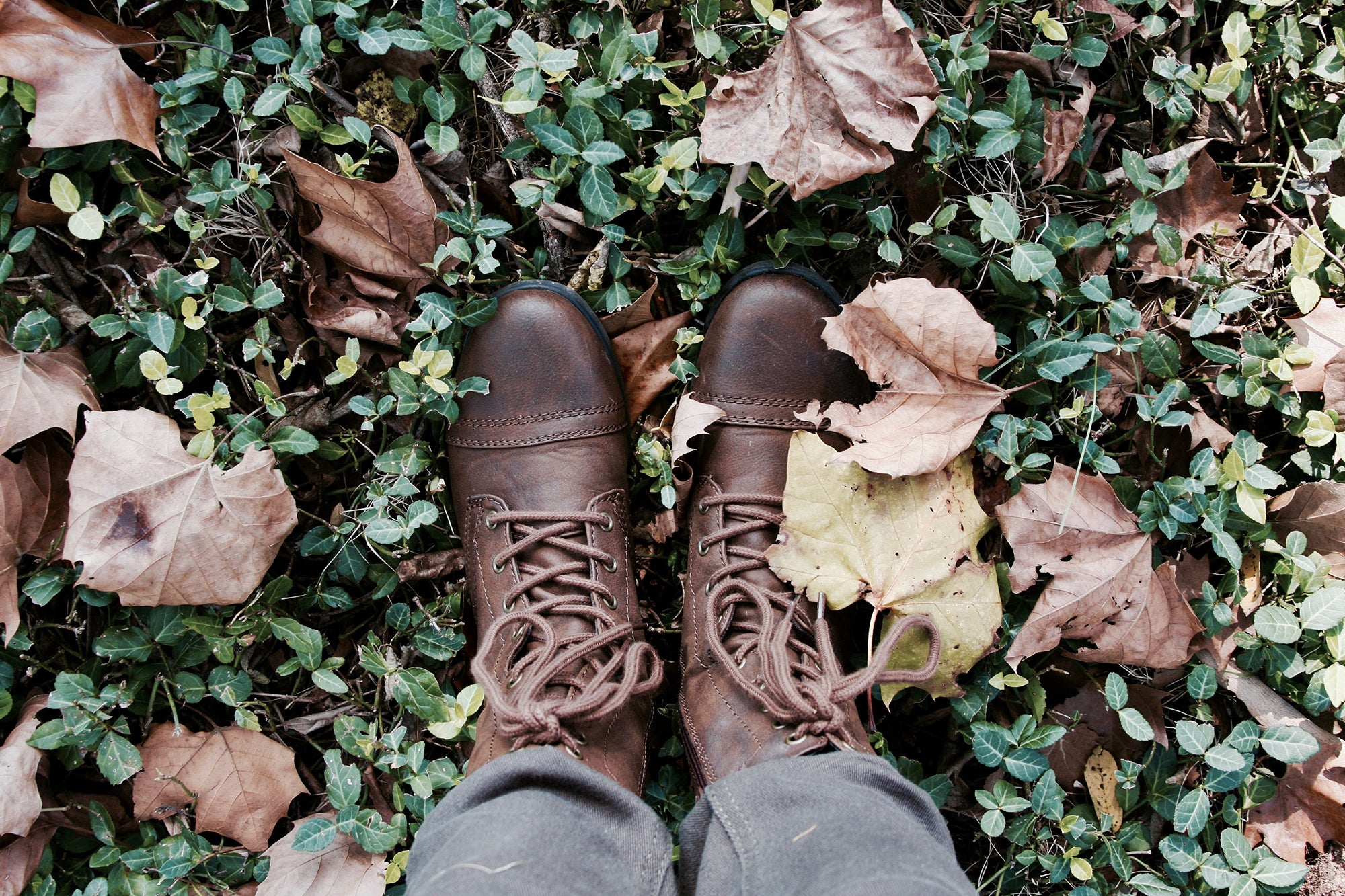 boots standing on grass with leaves around them