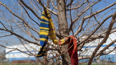 Turn climate data into a knitted accessory and a crafty conversation starter
