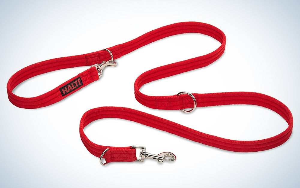 red training lead with two clips