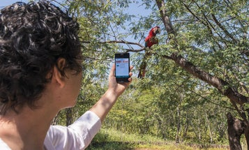 The next pandemic could be lurking anywhere. Can this wildlife-tracking app help prevent it?
