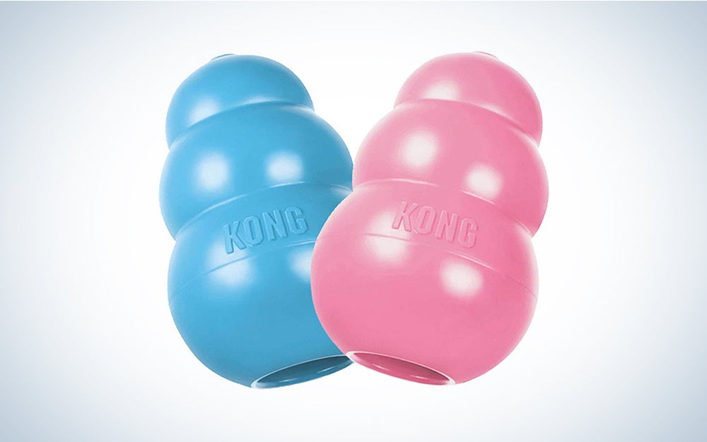 blue and pink kong puppy toys