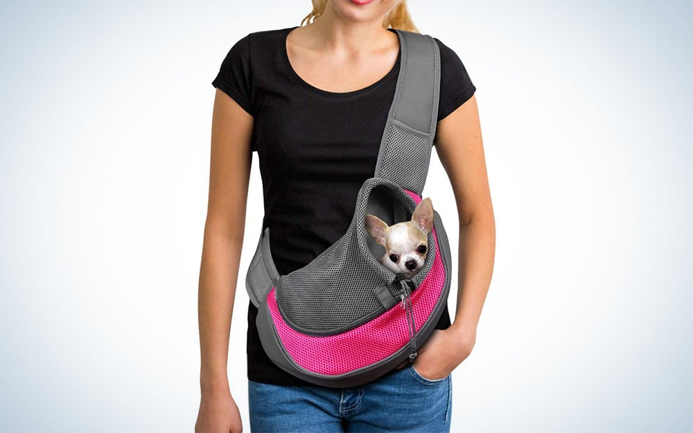 woman wearing a pet sling with a dog in it