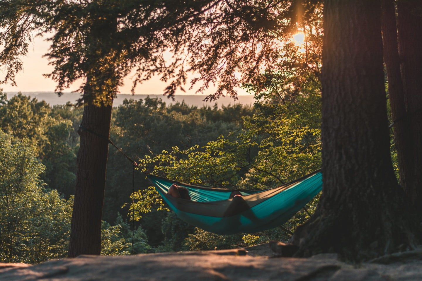 person in a hammock in between two trees