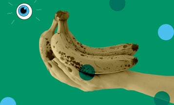 Craving a radioactive snack? Grab a banana.