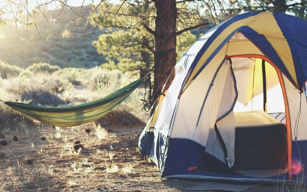 A blue camping tent and a green swing in nature at sunrise.