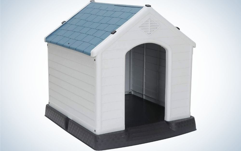 A small outdoor do house with one door and white wall and blue roof.