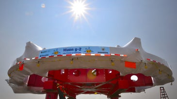 muon ring at fermilab
