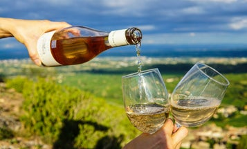Is your wine really sustainable? Here's how to tell.