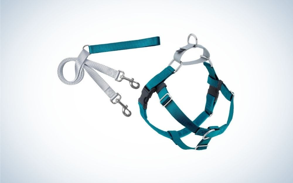Ocean blue and grey dog harness and leash