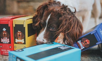 Best pet-food container: Keep your kibble fresh and your countertop organized