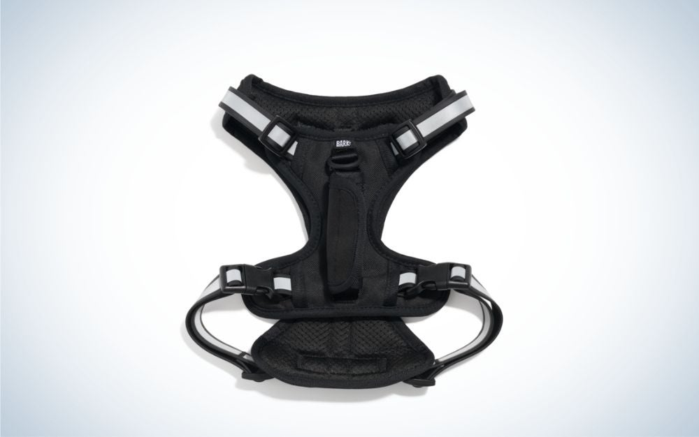 Black dog harness with gray straps